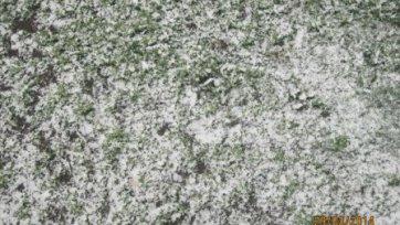 Снегопад хочет сорвать краснодарское дерби