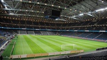 Газон на стадионе где сыграет Швеция и Россия, был испорчен злоумышленниками