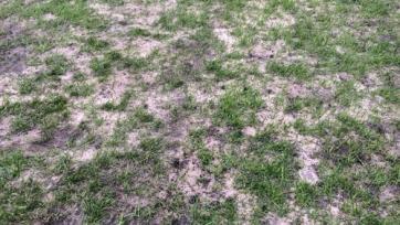 РФПЛ выступает против проведения матча «Арсенал» - «Торпедо» в Туле