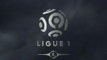 Французский футбол получит систему автоматического определения гола