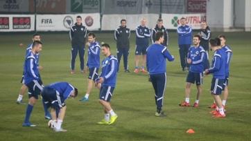 Стартовые составы матча между Боснией и Ирландией