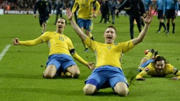 Чельстрём завершит международную карьеру после Евро-2016
