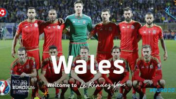 Официально: Уэльс отправится на Евро с Ледли, но без Хенли