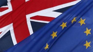 Если Великобритания выйдет из Евросоюза, то целый ряд игроков покинут АПЛ