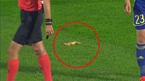 Мостовой прокомментировал инцидент на матче «Ростова» с ПСВ