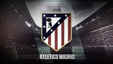Новая арена мадридского «Атлетико» будет готова в следующем году