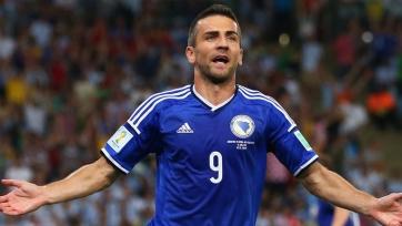 Ибишевич завершил выступления за сборную Боснии и Герцеговины