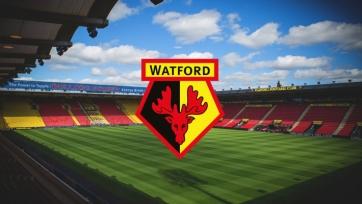 Пять игроков «Уотфорда» пропустят ближайший матч