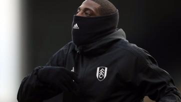 Форвард «Фулхэма» был арестован после драки на базе клуба
