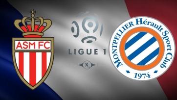 «Монако» – «Монпелье». 14.02.2020. Где смотреть онлайн трансляцию матча чемпионата Франции
