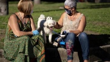 Оценена вероятность заражения человека коронавирусом от домашних животных